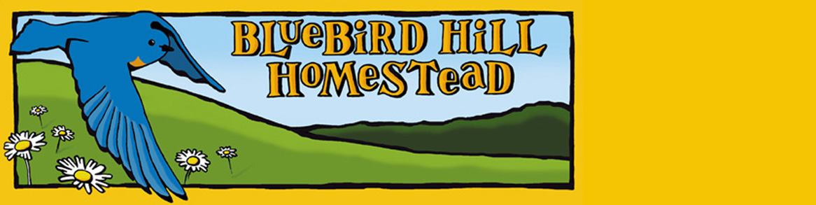 Bluebird Hill Homestead